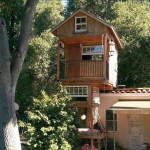 Tiny Haus Baumhaus