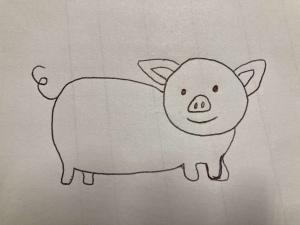 Schwein Aylin Stuhlskala